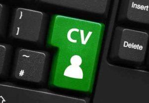 5554Redacción de Cv + Carta de Presentación en Word y PDF