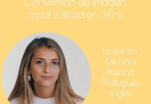 6151Conversión de texto en imagen o pdf a Word  en 24 hs