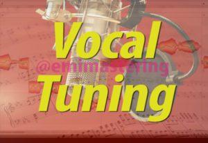 7313Afinacion Vocal e Instrumental